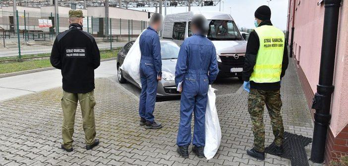 Zatrzymano nielegalnych migrantów z Turcji